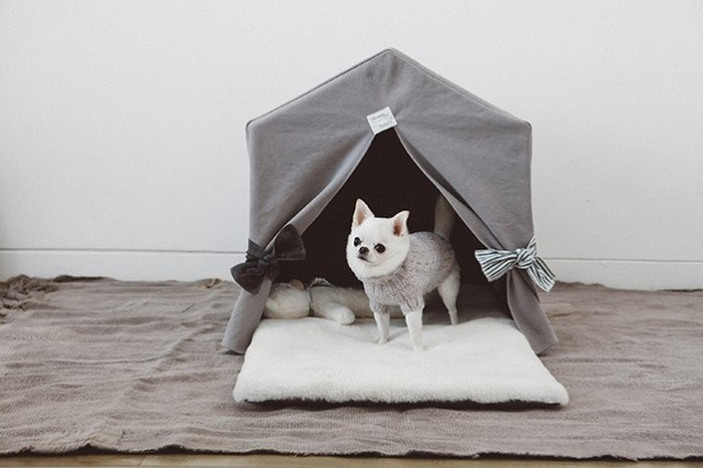 Louisdog(ルイスドッグ)Organic Peekaboo/Oxford Grey Petit オーガニック ピーカブ オックスフォード グレー