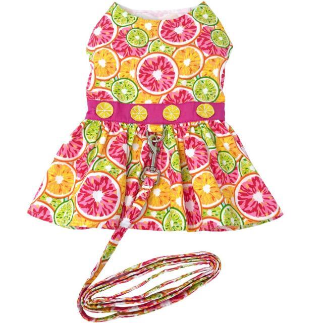Doggie Design(ドギーデザイン)ドッグウェア Citrus Slice Dog Dress シトラス スライス ハーネス ドレス